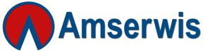 Amserwis – Urszula i Ryszard Woźniak firma w Internecie